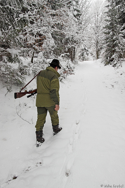 Slovenian hunter tracking wolves in Northern Dinaric Mountains i
